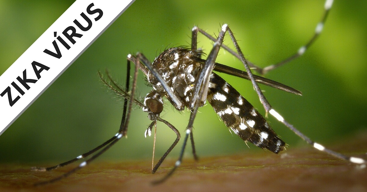 Como o Zika Vírus pode ser transmitido?